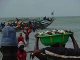 Der Fischmarkt in Tanji